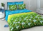 Комплект постельного белья «Родные просторы» (арт. 3569/1, 2-спальный, бязь, 2 наволочки 70х70)